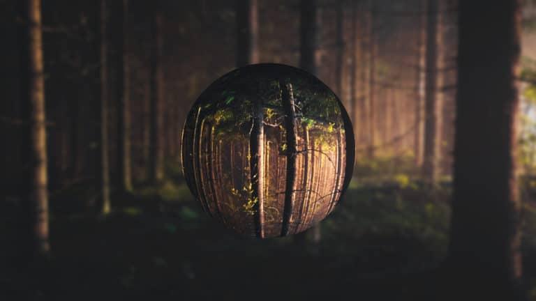 Tree orb art